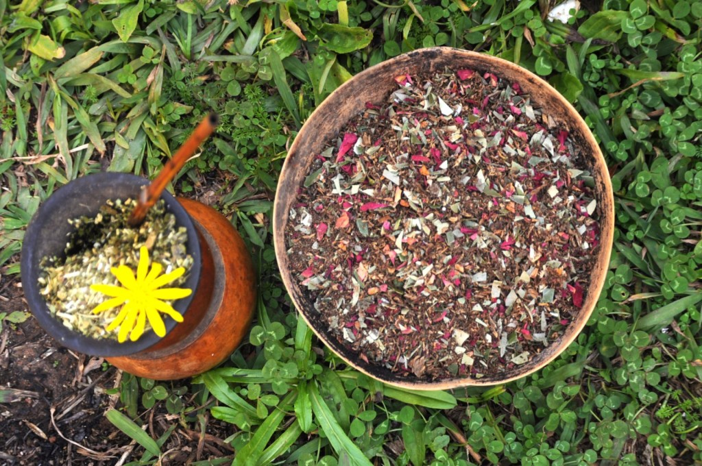 O preparado de tabaco (petym) e o mate (kaayu): medicinas sagradas.