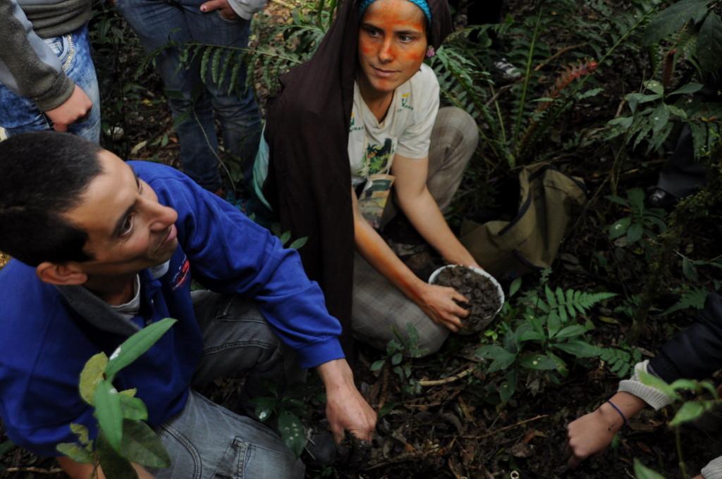 Colheita de terra para emplastro: escuta da floresta.