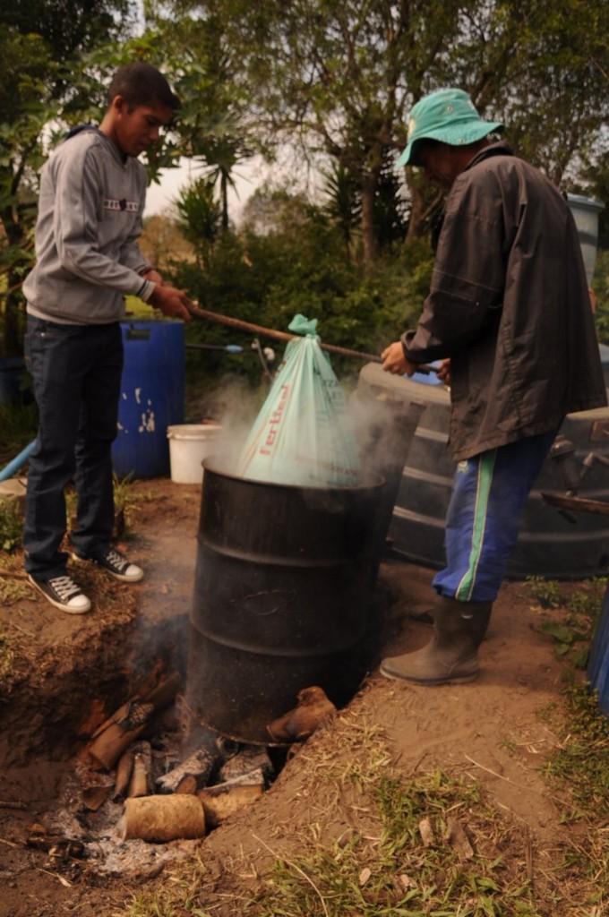 Odair nos mostrou como faz sua calda fertilizante: cozinha o esterco de aves na água por quatro horas (proporção de 1kg para 10 L), deixa esfriar, filtra e adiciona na terra via irrigação.